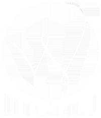 White Velvet Agency Logo